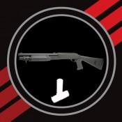 Shotguns (11)
